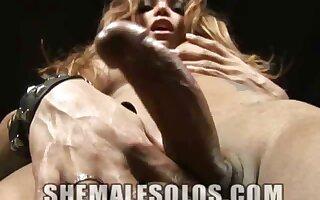 Kinky Shemale Mariana Fenix Strips