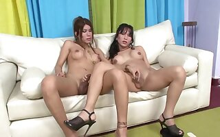Dirty shemales Melanie B. plus Vanesa C fuck many times stand-in in be transferred to ass